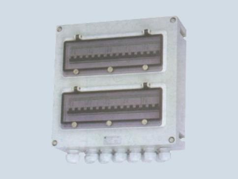 防水防尘防腐照明(动力)配电箱 FX(M)D